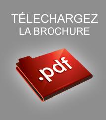 borchure